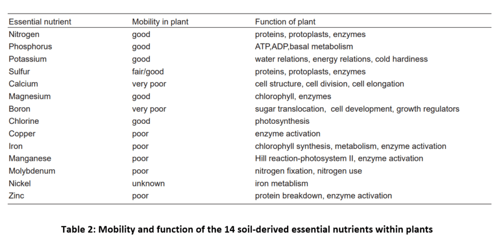 nutrients function